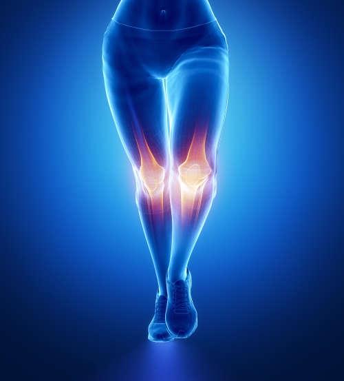 整体 膝痛